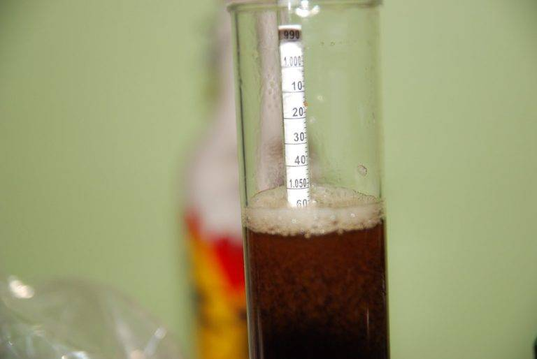 9 Best Hydrometers for Home Brewing